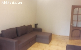 Однокомнатная квартира на Турбазе
